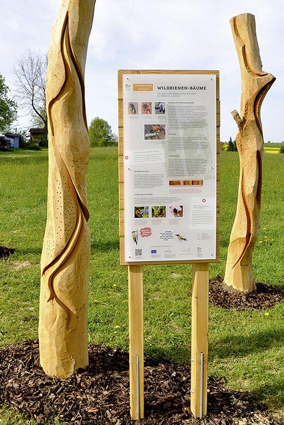 Abgestorbene Bäume als Nistplatz für Wildbienen