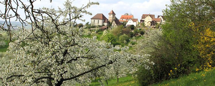 Blick auf Obermönchberg