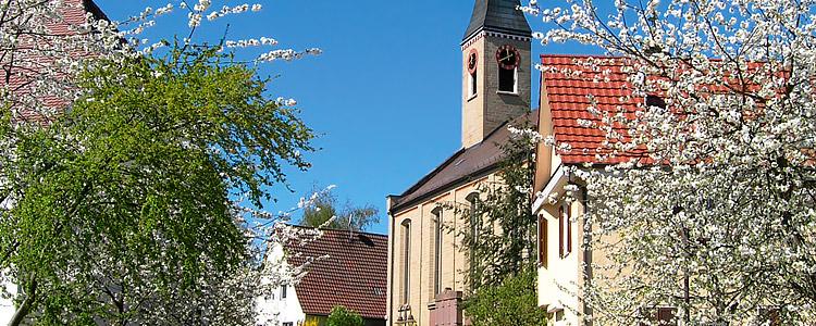 Blühende Obstbäume in der Ortsmitte von Oberjesingen